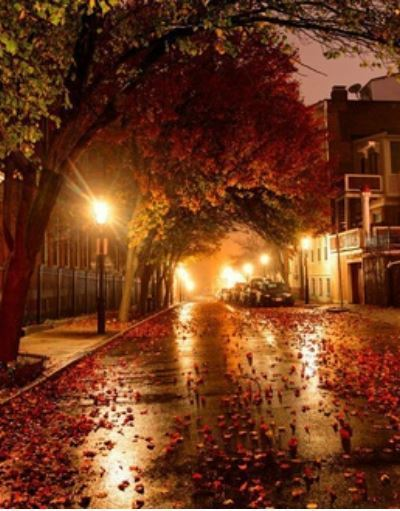 article and fall autumn cozy image