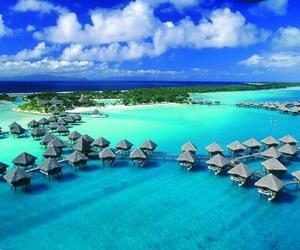 sea, paradise, and blue image