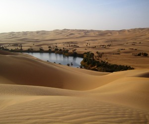 desert, oasis, and travel image