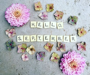 September, flowers, and autumn image