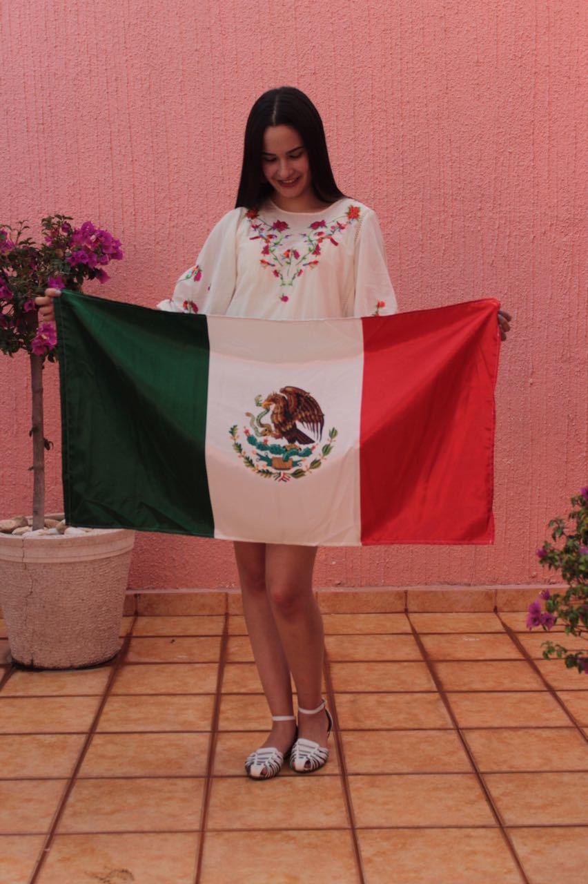 bordado, brunette, and méxico image