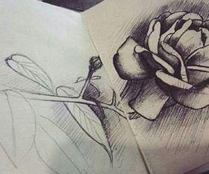 drawing, dibujo, and rose image