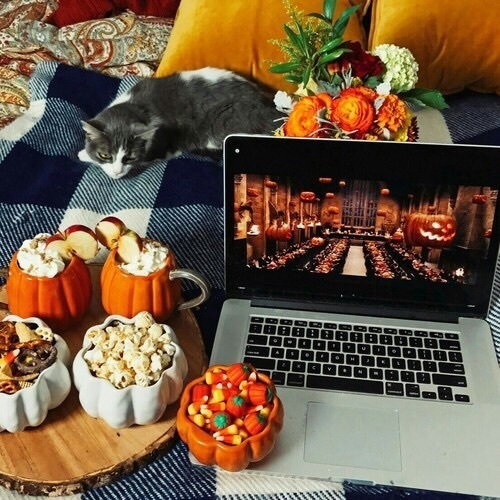 autumn, hp, and potter image