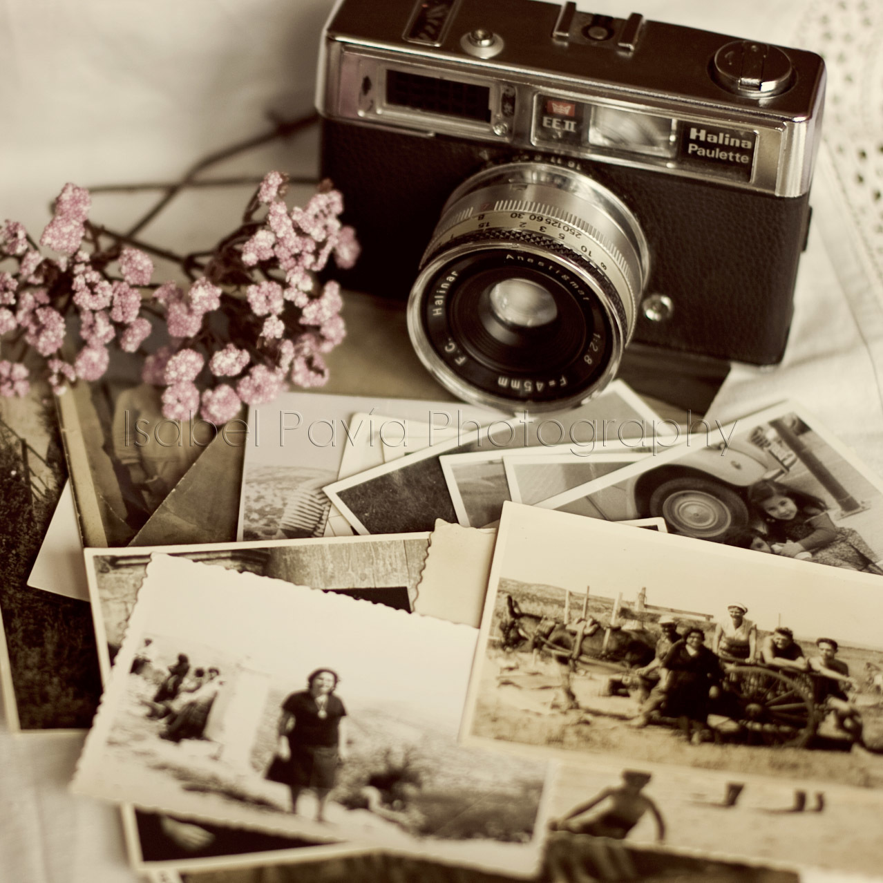 camera, flowers, and photos image