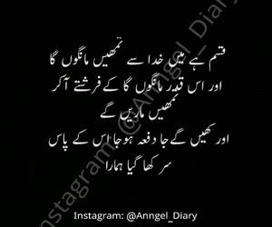 pakistan, urdu, and ishq image