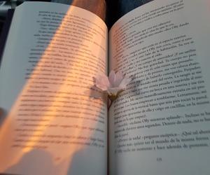 alternative, batman, and books image