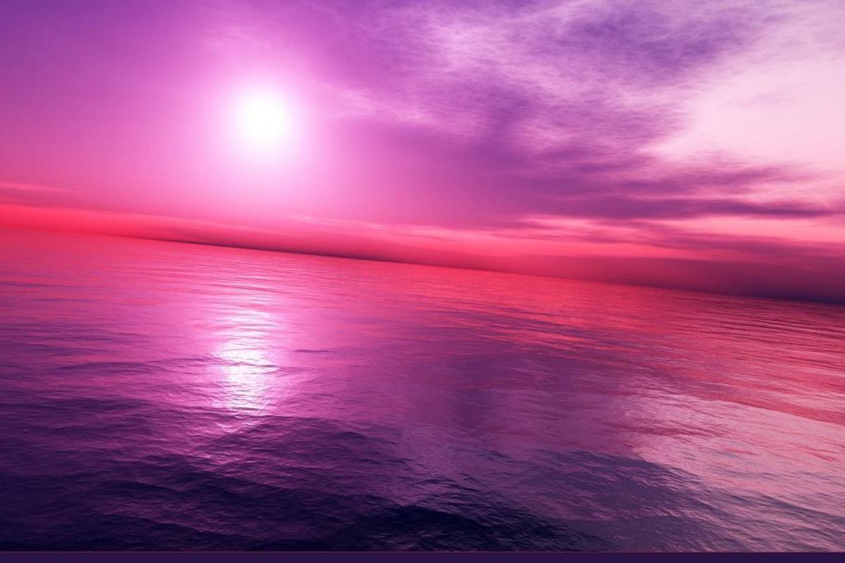 purple and pink image