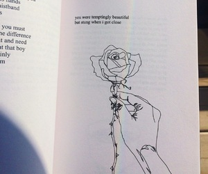 rose, book, and beautiful image