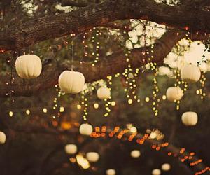light, autumn, and Halloween image