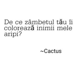 cactus, quotes, and words image
