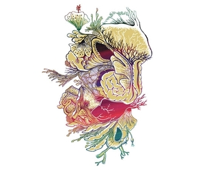 flowers, threadless, and illustration image
