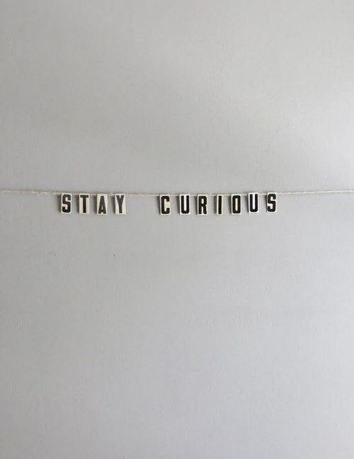 quotes, curious, and stay image