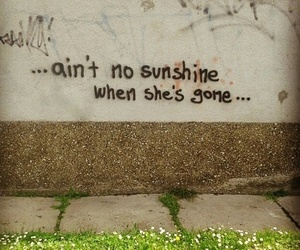 love, sunshine, and song image