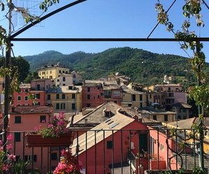 balcony, cinqueterre, and flowers image