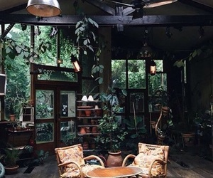 feed, indie, and jungle image