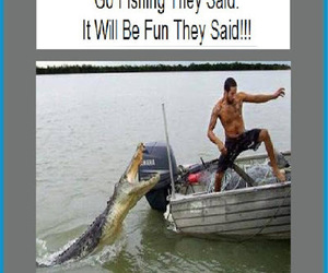 funny, lol, and funny pics image