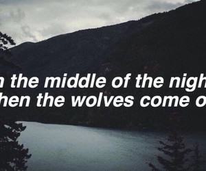 wolves, night, and quote image