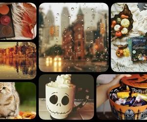 autumn, lake, and books image