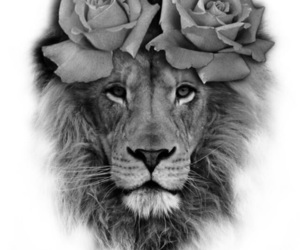 lion, rose, and tattoo image