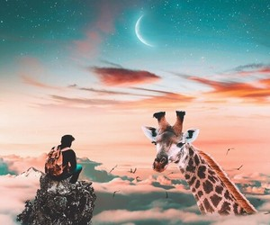 adventure, animals, and beauty image