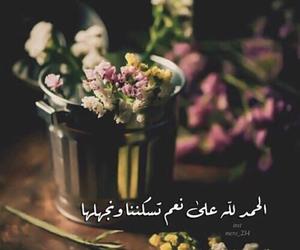 عربي and نعم image