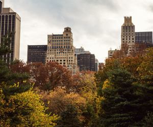 autumn, boston, and city image