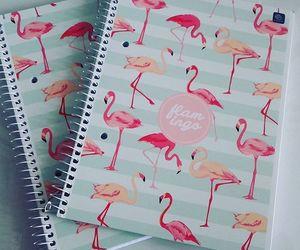 notebook, school, and school supplies image