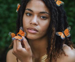 butterflies, dreadlocks, and dreads image
