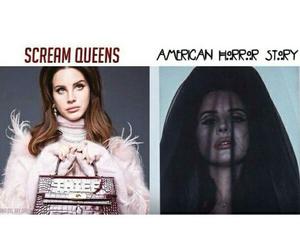 scream queens, lana del rey, and ahs image
