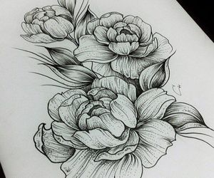 drawing and peonies image
