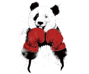 illustration, pandas, and threadless image