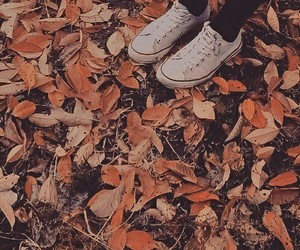 fall and shoes image
