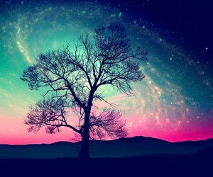 tree, galaxy, and sky image