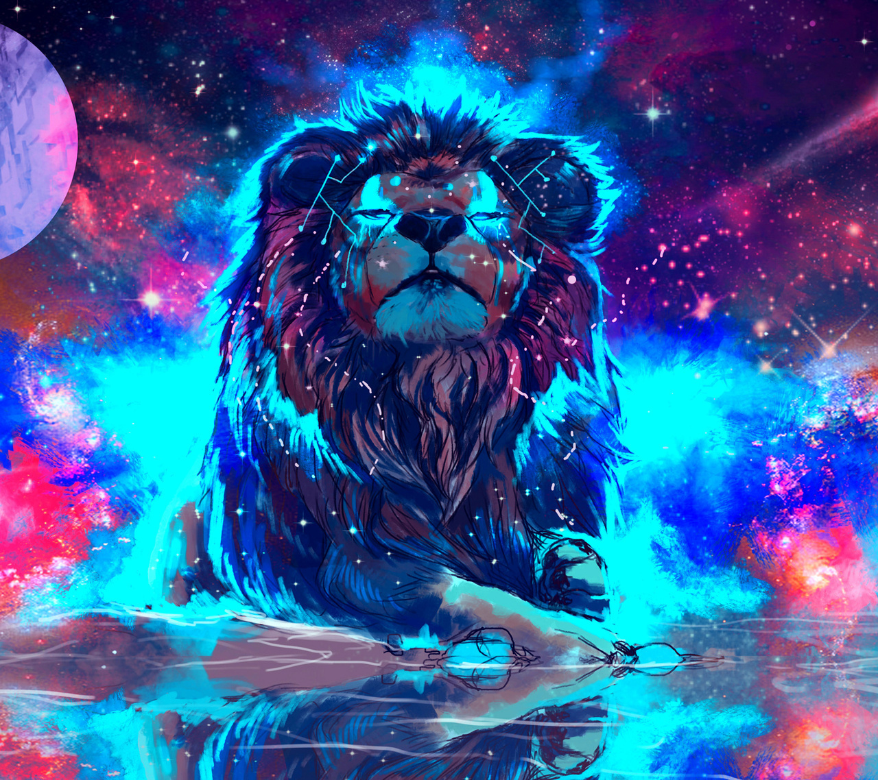 lion, colors, and wallpaper image