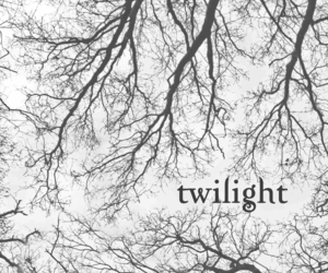 twilight, twilight wallpaper, and twilight lockscreen image