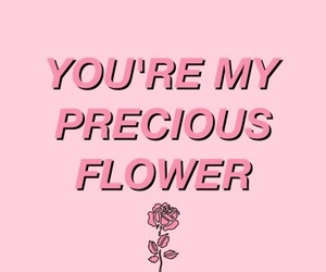 quotes, flowers, and pink image