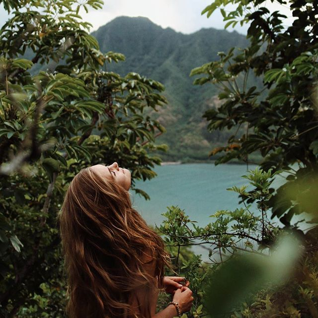 nature, hair, and green image