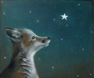 dreams and fox image