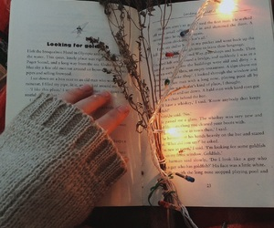 autumn, book, and cosy image