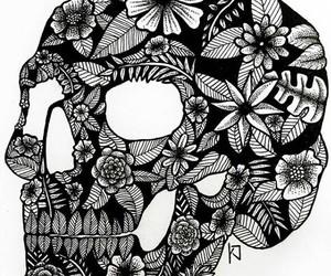 b&w, black, and black & white image