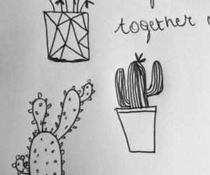 cactus, drawing, and grow image