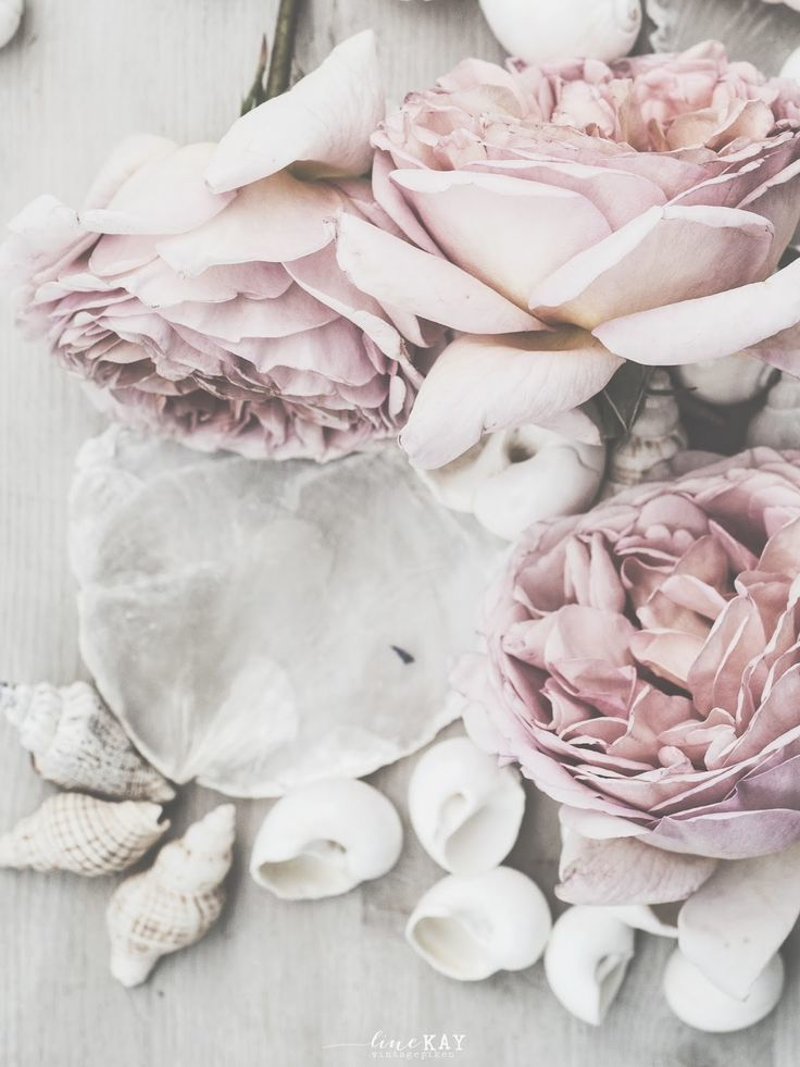 article, writing, and flower image