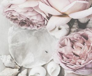 article, thoughts, and flower image