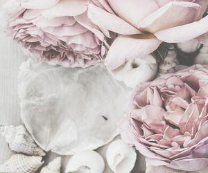 article, flower, and haiku image