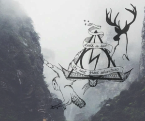 deathly hallows, deer, and grey image