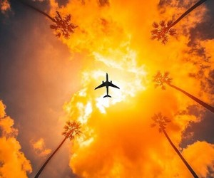 airplane, summer, and orange image