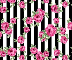 wallpaper and roses image