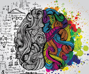brain and colors image