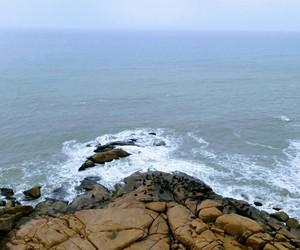 faro, playa, and focas image