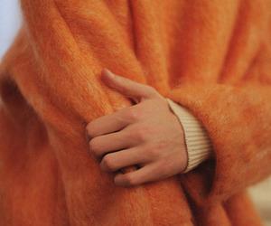 fall, nice, and sweater image